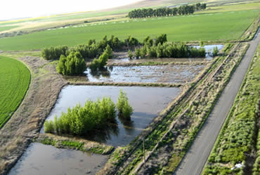 Managing Farm Water Quality